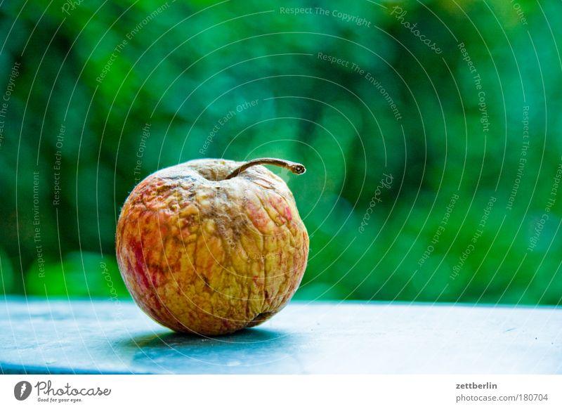 Apfel grün Ernährung Frucht Hautfalten Falte Ernte Vitamin Textfreiraum Mensch Erntedankfest Vegetarische Ernährung Schrebergarten schrumplig verschrumpelt