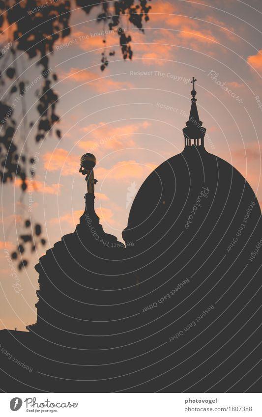 Dämmerlicht Potsdam Deutschland Stadt Haus Kirche Dom Sehenswürdigkeit Wahrzeichen Zeichen blau rosa schwarz Stimmung Religion & Glaube Abenddämmerung Kreuz