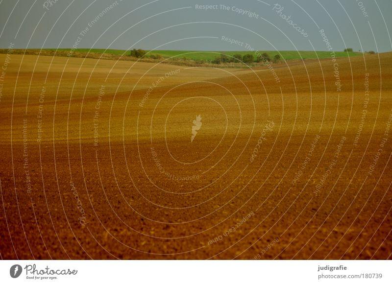 Acker grün ruhig Einsamkeit braun Feld Umwelt Erde natürlich Hügel Landleben