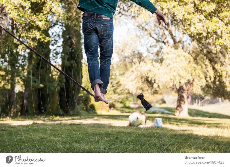 Füße, Seil, Slacking Gleichgewicht Slacklinen Seiltänzer Mann Fuß Beine 18-30 Jahre 1 Mensch Schönes Wetter Park Baum Avignon Stadt Jeanshose Barfuß Gurt