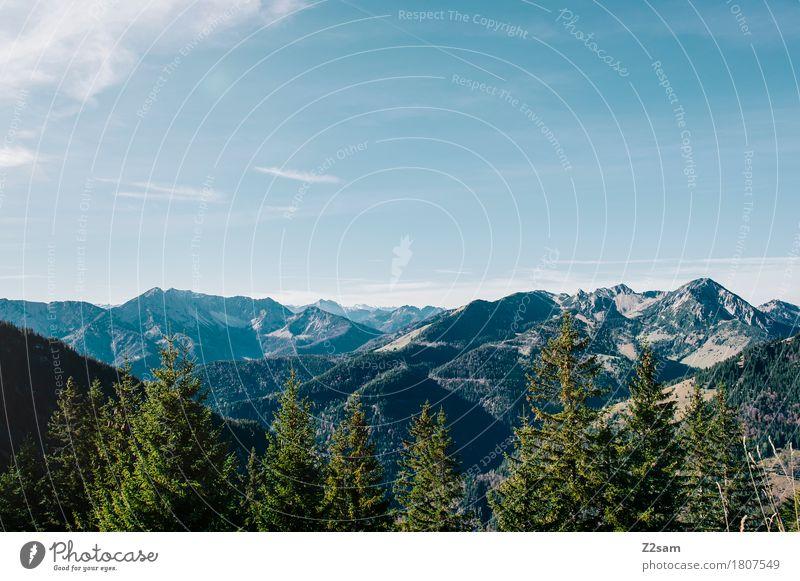 Postkarte wandern Natur Landschaft Himmel Sommer Schönes Wetter Baum Wald Alpen Berge u. Gebirge Unendlichkeit nachhaltig natürlich blau grün Farbe Freiheit