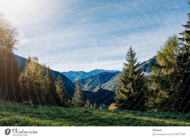 Bayerischzell Himmel Natur blau Farbe Sommer grün Baum Landschaft Erholung ruhig Berge u. Gebirge Umwelt Wiese natürlich wandern Idylle