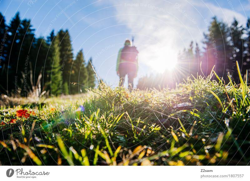 Der Sonne entgegen Himmel Natur Ferien & Urlaub & Reisen Sommer Landschaft Erholung Einsamkeit ruhig Berge u. Gebirge Wiese natürlich Bewegung Lifestyle feminin