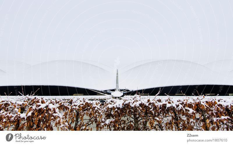 moderne Hügel Winter Landschaft schlechtes Wetter Eis Frost Schnee Sträucher ästhetisch einfach kalt trist weiß Design einzigartig Surrealismus Symmetrie Dach