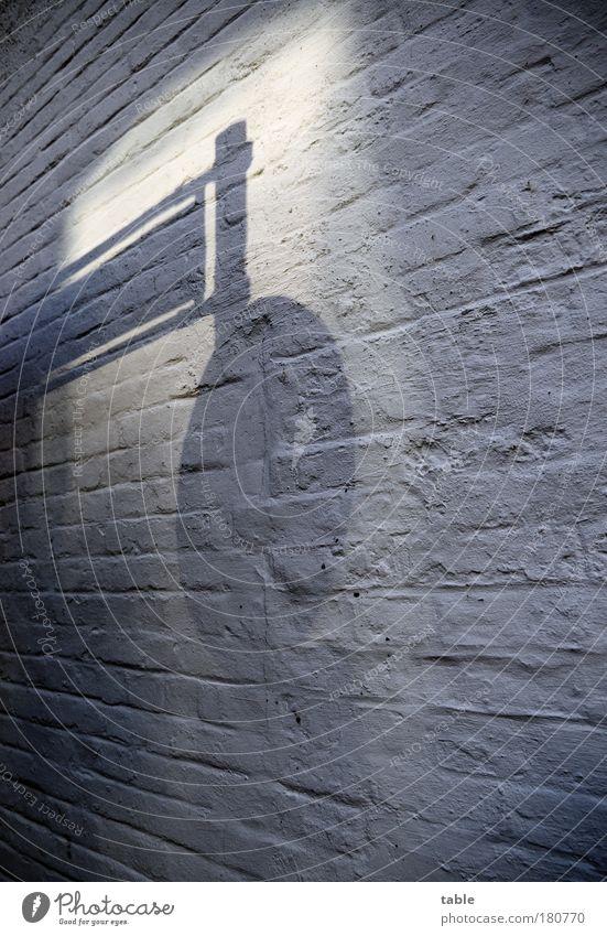 wegweisend... Farbfoto Gedeckte Farben Menschenleer Schatten Reflexion & Spiegelung Mauer Wand Verkehr Verkehrswege Straßenverkehr Autofahren Busfahren