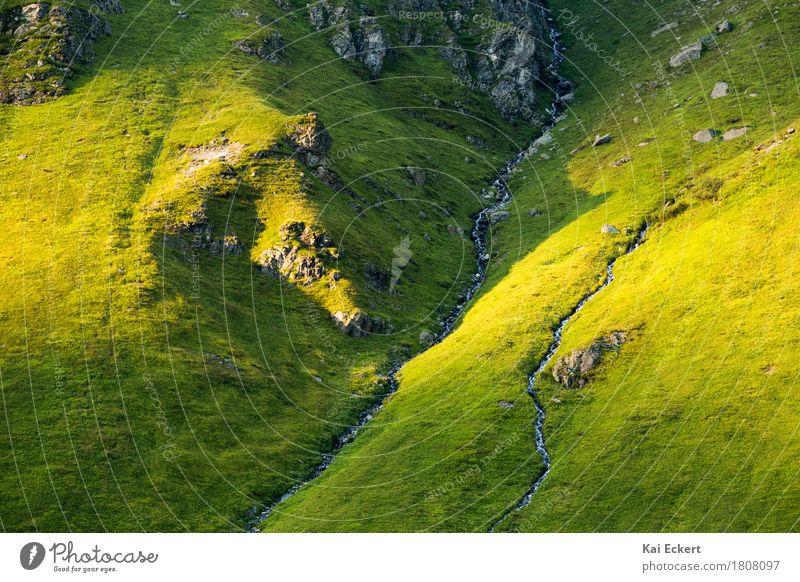 Mountain stream Natur Ferien & Urlaub & Reisen Sommer grün Wasser Landschaft Erholung Berge u. Gebirge Leben gelb Gras Felsen wild Zufriedenheit wandern