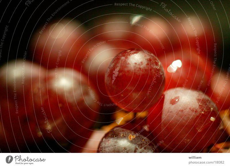 trauben Weintrauben Ernährung Natur Makroaufnahme