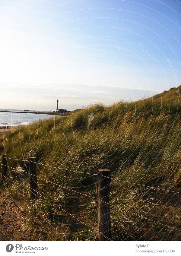 Leuchturm hinterm Hügel Natur Wasser Himmel Sonne Pflanze Sommer Strand Ferien & Urlaub & Reisen Ferne Gras Freiheit Sand Landschaft Luft Stimmung Küste