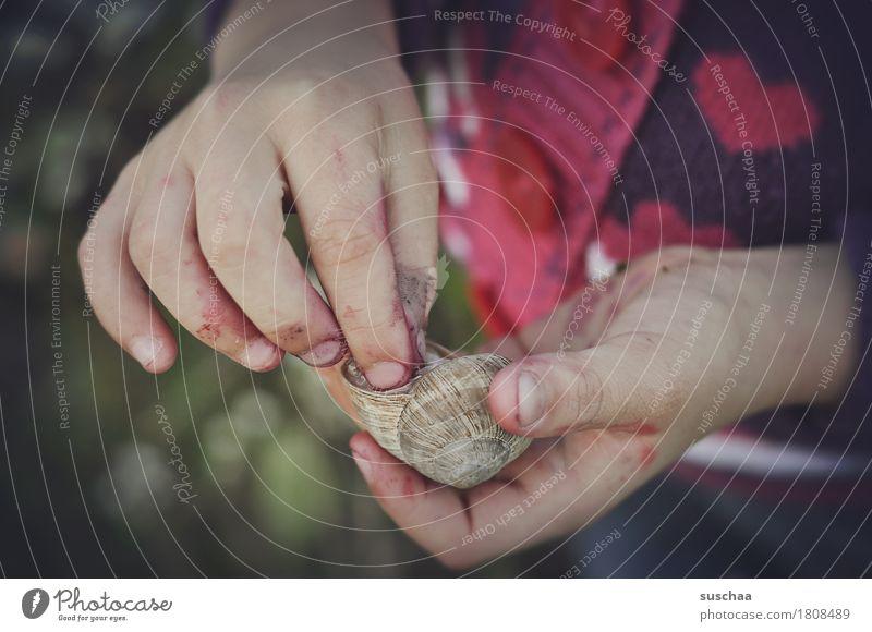 kinderhände II Kind Hand Finger dreckig abenteuerlust entdecken berühren ansehen erleben festhalten Schnecke Schneckenhaus Zuhause bewohnt Kindheit