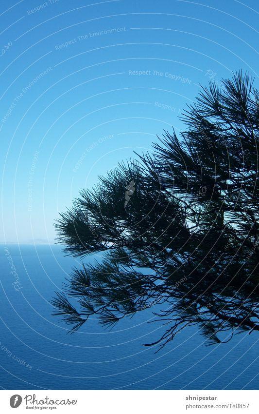 Blaue Caprisonne Himmel blau Wasser Ferien & Urlaub & Reisen Sonne Sommer Meer Ferne Erholung kalt Horizont Wellen nass Tourismus Insel Italien