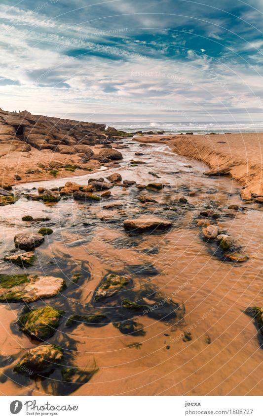 Neuanfang Himmel blau Sommer weiß Landschaft Meer Wolken ruhig Strand Wärme Küste Stein braun Horizont Idylle Schönes Wetter