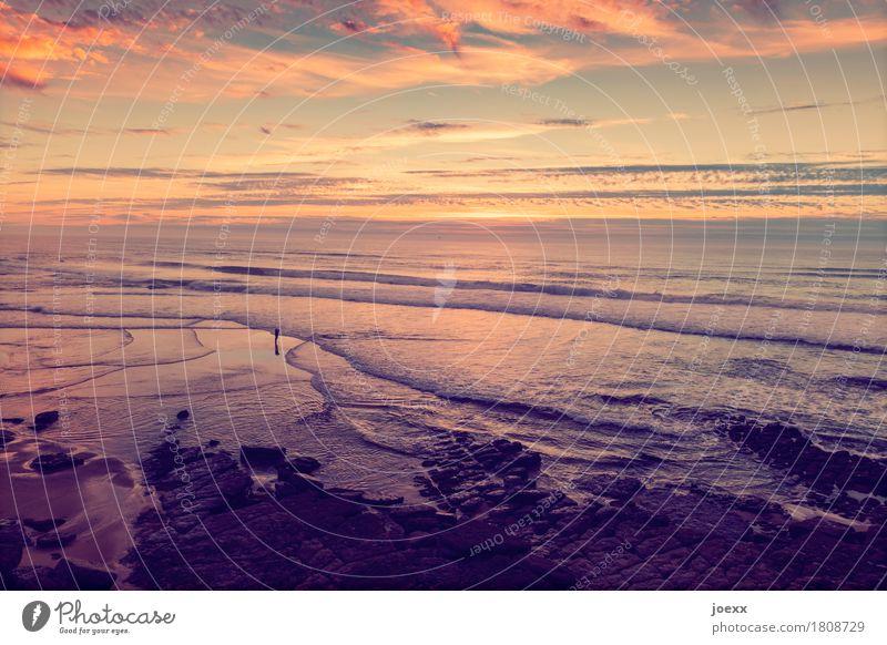 Wenn Du mich vermisst Himmel Ferien & Urlaub & Reisen blau Sommer schön Landschaft Meer Erholung Wolken ruhig Ferne Strand schwarz Küste Tourismus orange