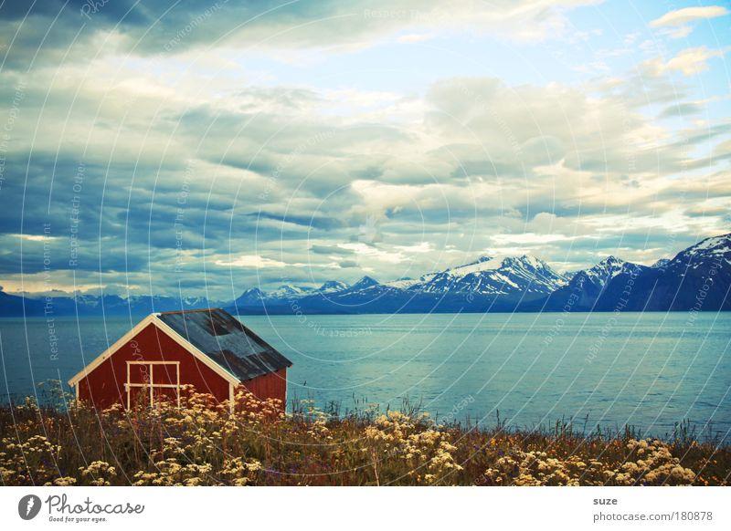 Bootshaus Natur Ferien & Urlaub & Reisen Pflanze rot Meer Blume Einsamkeit Wolken ruhig Landschaft Haus Erholung Umwelt Wiese Berge u. Gebirge Küste