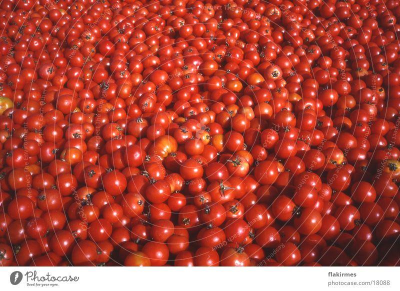 Tomaten satt rot Gesundheit Lebensmittel Tomate Gemüse