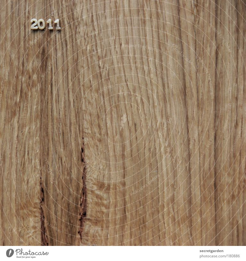 """"""".... und wo sehen Sie sich im Jahre 2011?"""" Ernährung Holz Lebensmittel braun Beginn ästhetisch Tisch Schriftzeichen Zukunft einfach Vergänglichkeit"""