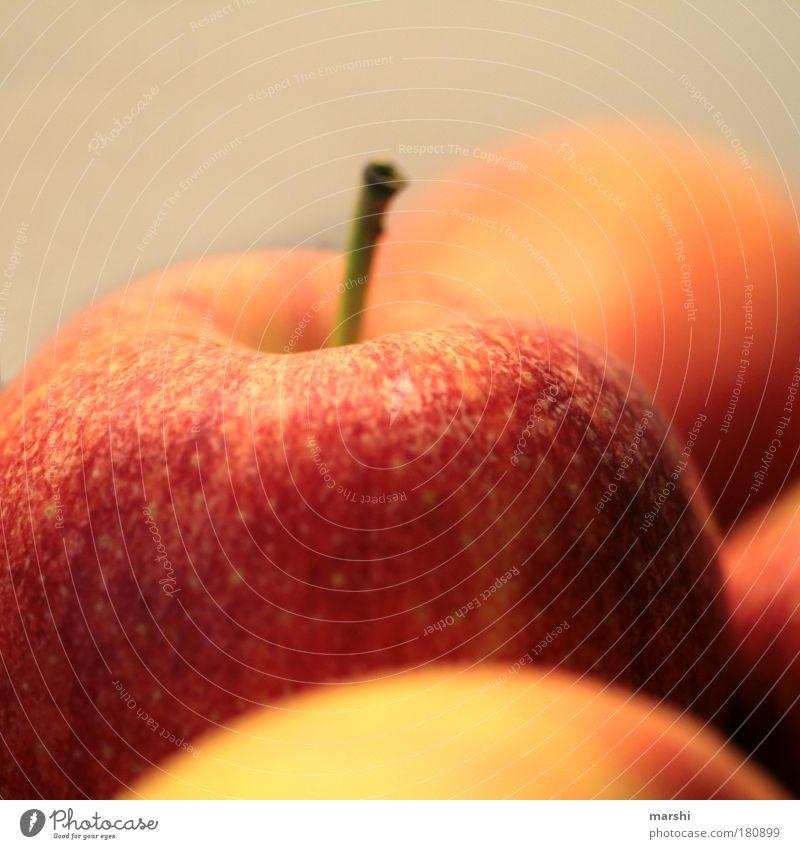 an apple a day keeps the doctor away! Farbfoto Nahaufnahme Detailaufnahme Unschärfe Schwache Tiefenschärfe Lebensmittel Frucht Apfel Ernährung Bioprodukte