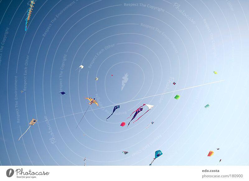 Himmel blau Strand Ferien & Urlaub & Reisen Freiheit Luft frei Fröhlichkeit beobachten Spielzeug Lebensfreude Festspiele Lenkdrachen Begeisterung Niederlande