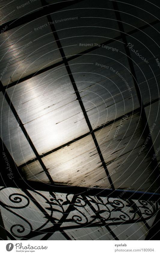 Absorption alt Pflanze Haus dunkel Architektur Gebäude Glas dreckig Dach Dekoration & Verzierung retro Bauwerk Fabrik Kitsch Schutz
