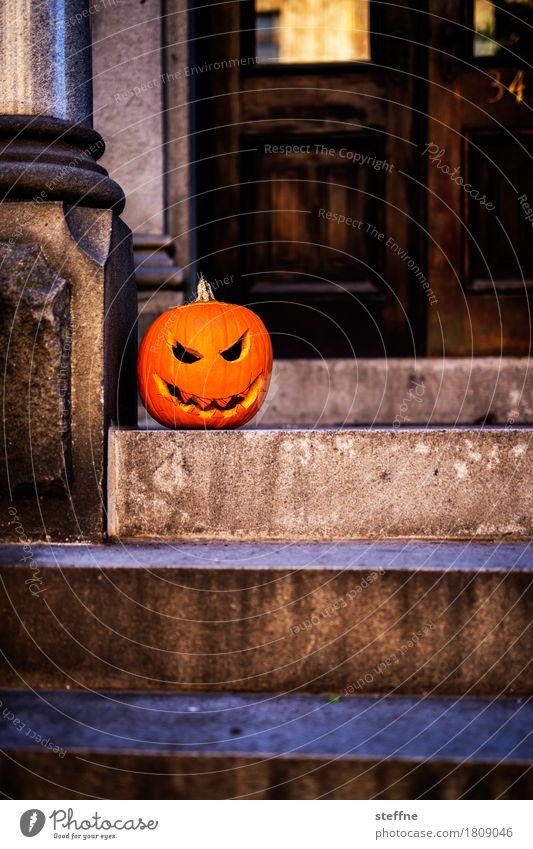 Halloween Gemüse gruselig USA trick or treat Kürbis kürbisgesicht schnitzen Grimasse Treppe Hauseingang Tradition Feiertag Farbfoto Außenaufnahme
