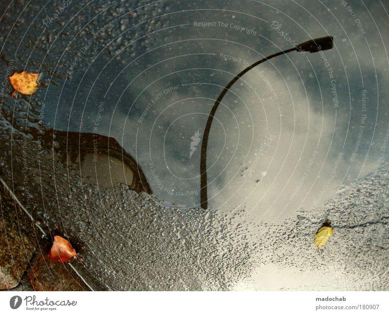 ... und einsam wacht Wasser Stadt Blatt Herbst Straße dunkel Regen nass Verkehr Klima außergewöhnlich Hoffnung Boden Asphalt Glaube Laterne