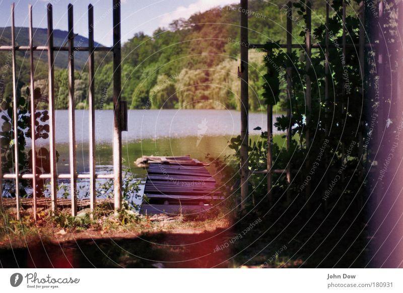 Bretter, die die Welt bedeuten Baum Einsamkeit Wiese Landschaft Berge u. Gebirge Gras See gefährlich kaputt Sträucher Vergänglichkeit Hügel Idylle verfallen