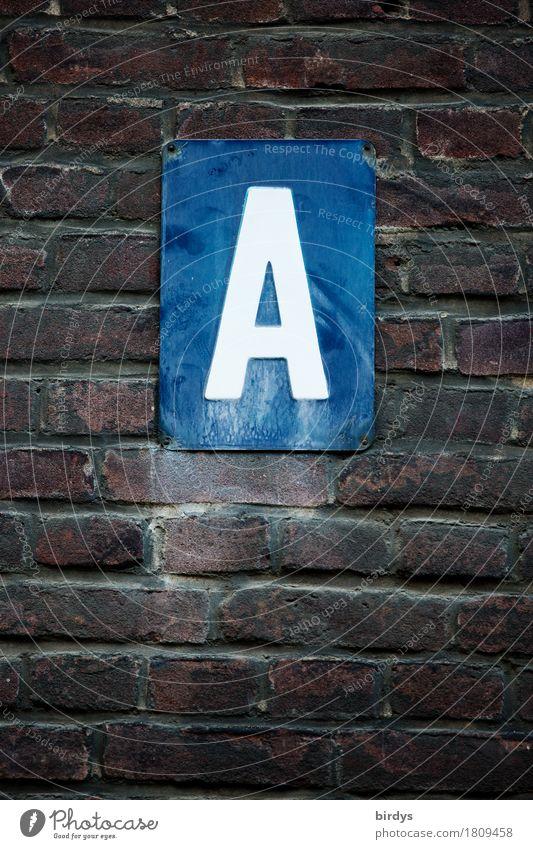 Alles ist möglich Mauer Wand Backsteinwand Schriftzeichen Schilder & Markierungen alt authentisch dunkel blau braun weiß Beginn Buchstaben Anfangsbuchstabe