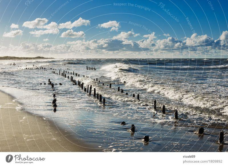 Die Ostseeküste an einem stürmischen Tag Erholung Ferien & Urlaub & Reisen Tourismus Strand Meer Natur Landschaft Wasser Wolken Sturm Küste Holz Romantik Idylle