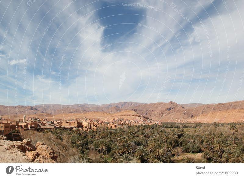 Fata Morgana Ferien & Urlaub & Reisen Tourismus Ausflug Abenteuer Ferne Expedition Natur Landschaft Pflanze Wasser Himmel Wolken Schönes Wetter Sträucher