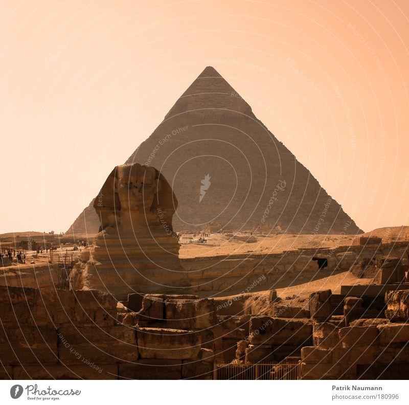 Die große Sphinx von Gizeh Landschaft Architektur Sand Wärme Traurigkeit Kunst Erde Armut Tourismus ästhetisch Kultur Bauwerk Wüste Kreativität