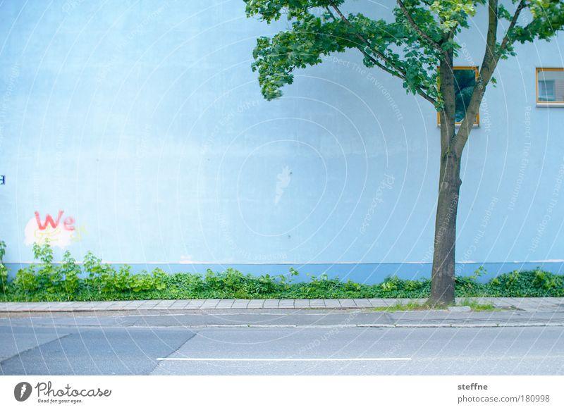 We Baum grün blau Haus Straße Fenster Gras Wege & Pfade Zusammensein Fassade Kommunizieren Idylle Freundlichkeit Zusammenhalt sozial Identität