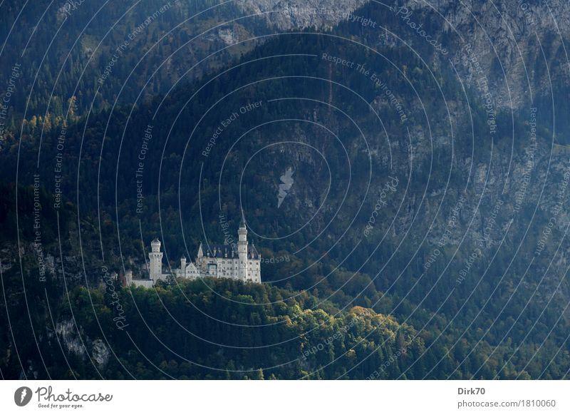 Neuschwanstein herbstlich - das war's. Ferien & Urlaub & Reisen Tourismus Ausflug Sightseeing Berge u. Gebirge Herbst Baum Wald Felsen Alpen Bergwald Berghang