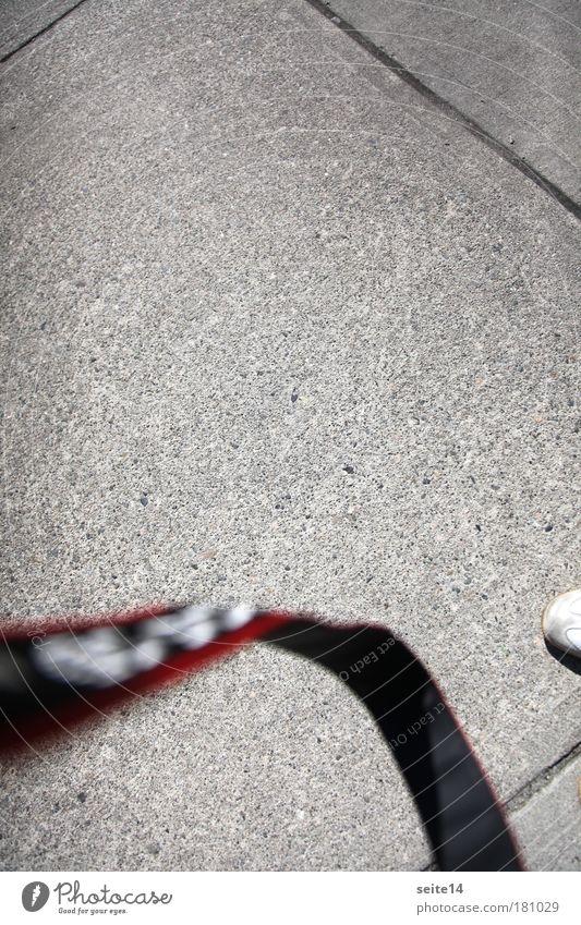 Vancouver. Kamera. Kameragurt. Fotograf. Schuhspitze. Schuh. grau Linie Beton Schnur Fuge Bodenplatten Gurt Betonplatte