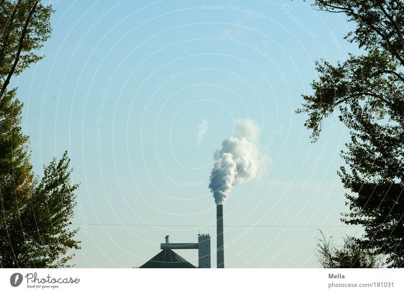 Industrienation Farbfoto Außenaufnahme Menschenleer Textfreiraum oben Tag Zentralperspektive Fabrik Umwelt Himmel Klimawandel Baum Dach Schornstein Rauch atmen