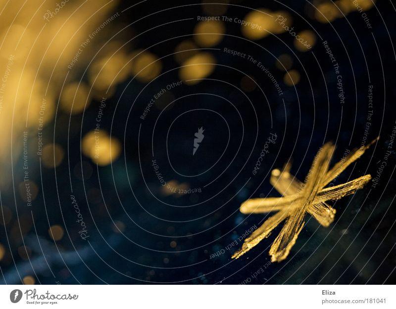 Goldrausch Weihnachten & Advent Stern glänzend Kitsch Dekoration & Verzierung Schmuck edel Basteln gemalt Glamour Sternenhimmel Lichtpunkt Kostbarkeit