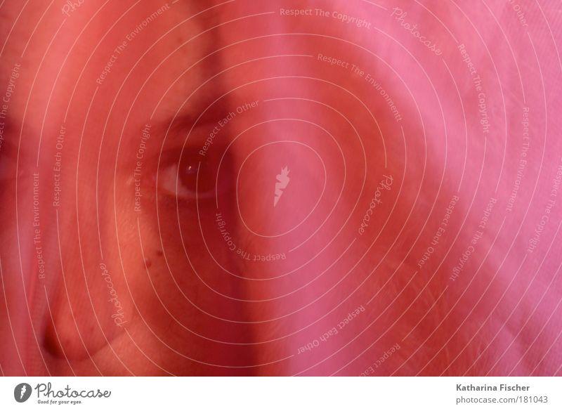 Rosaroter Augen-Blick feminin Frau Erwachsene Kopf Gesicht Nase 1 Mensch Kunst außergewöhnlich exotisch schön Wärme wild rosa Schleier Augenbraue Farbfoto
