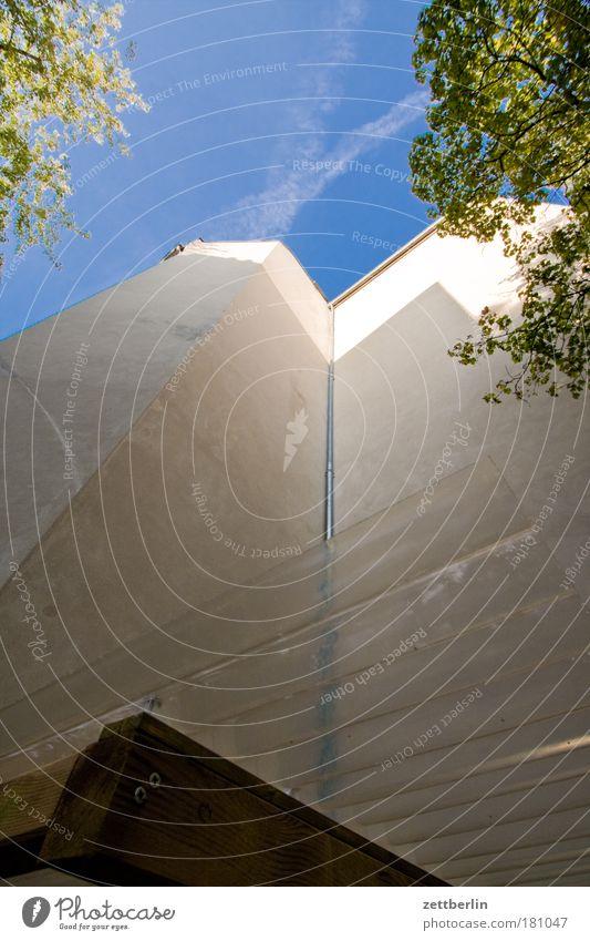Spätsommer Himmel Baum grün Pflanze Sommer Blatt Haus Wolken Mauer Gebäude Hinterhof hinten Gesetze und Verordnungen Mieter Stadthaus Sauerstoff