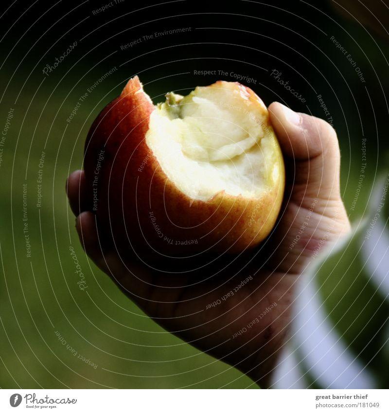 ...mich auch Hand grün Junge Frucht Apfel fest berühren Appetit & Hunger Kind Kleinkind Hemmungslosigkeit 1-3 Jahre