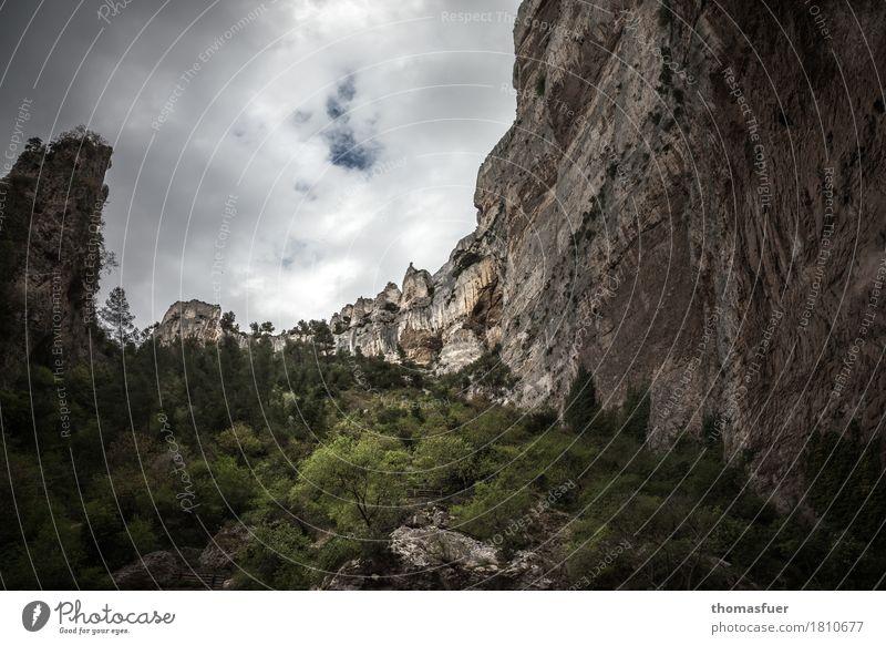 Felswand, Bäume, Tal Ferien & Urlaub & Reisen Tourismus Ausflug Ferne Berge u. Gebirge wandern Umwelt Natur Landschaft Himmel Gewitterwolken Horizont Wetter