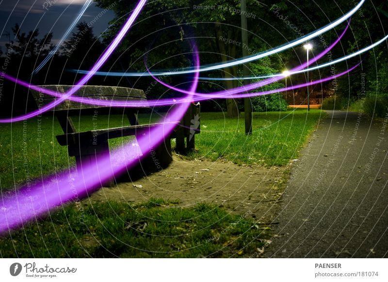 Nachtgespenst Natur blau grün schwarz Wiese Herbst Gras Wege & Pfade Park frei Geschwindigkeit ästhetisch Fröhlichkeit Bank violett Laterne