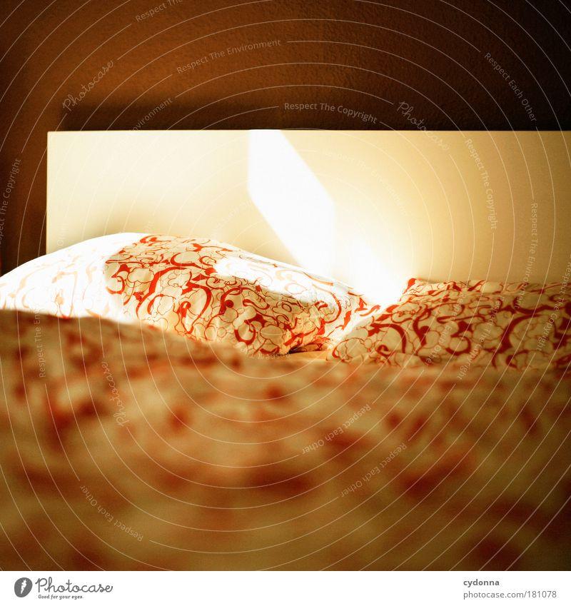 Guten Morgen Erholung ruhig Leben Innenarchitektur Zeit Paar Wohnung träumen Zufriedenheit Häusliches Leben Warmherzigkeit weich Bett Bettwäsche Partnerschaft
