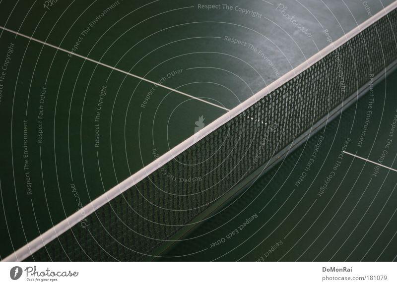 ---/- weiß grün Sport Spielen Metall Linie ästhetisch Erfolg Kunststoff Netz Grenze Trennung Sportveranstaltung Geometrie eckig Konkurrenz