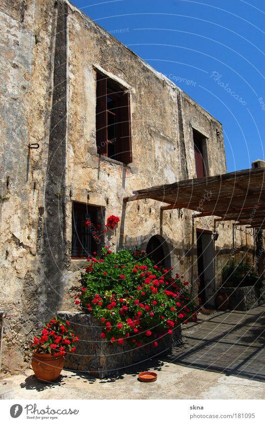 Crete my love schön alt Sonne Sommer Ferien & Urlaub & Reisen ruhig Haus Einsamkeit Erholung Wärme hell Stimmung Wohnung Insel Tourismus authentisch