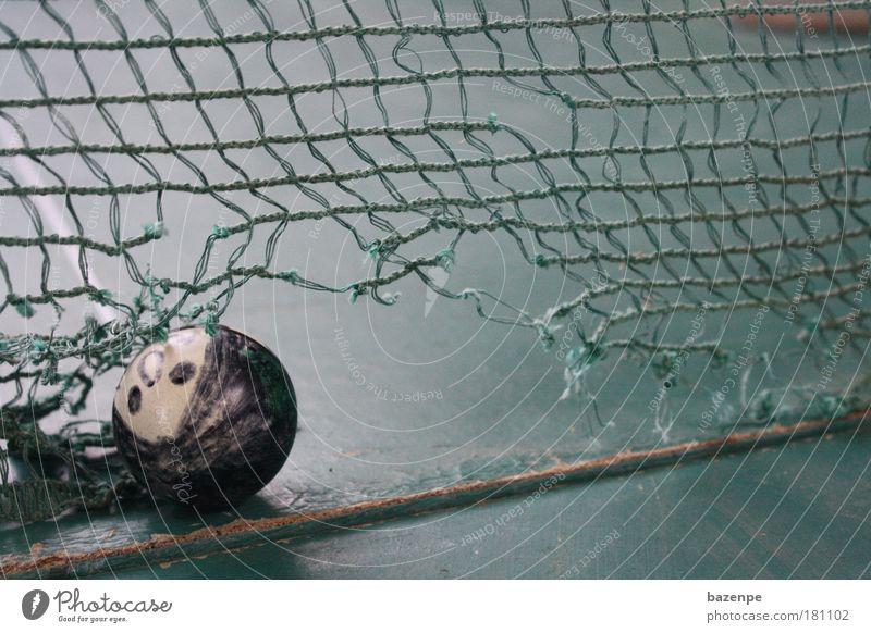 Ping Pong Putt alt Sommer Freude Sport Spielen Bewegung Holz Garten Freizeit & Hobby dreckig liegen außergewöhnlich authentisch Ball Kunststoff drehen