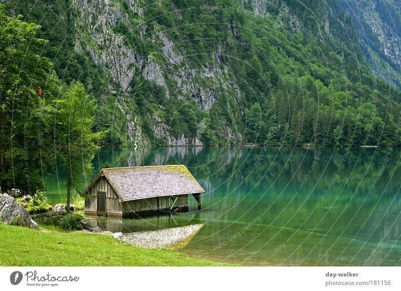 Hütte im Königssee II Farbfoto Außenaufnahme Menschenleer Tag Licht Schatten Kontrast Reflexion & Spiegelung Schwache Tiefenschärfe Natur Landschaft Pflanze