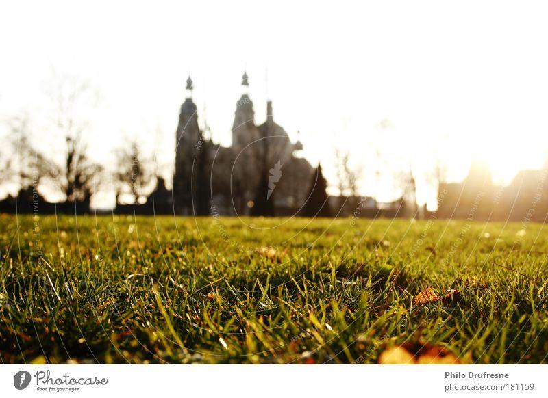 angenehme Märzluft Natur Baum Sonne Stadt Pflanze Sommer ruhig Blatt Erholung Wiese Gras Frühling Stein Park Erde