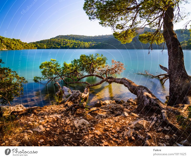 Mljet Natinal Park Umwelt Natur Landschaft Pflanze Sand Luft Wasser Himmel Wolkenloser Himmel Sommer Wetter Schönes Wetter Seeufer Bucht Meer Insel Glück