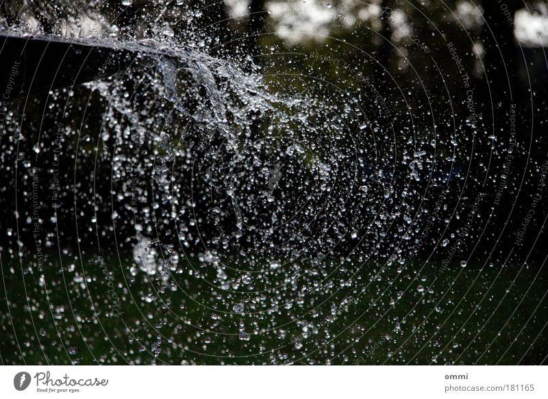 Sekundenbruchteiltropfenmeer Wasser Leben Bewegung nass wild Wassertropfen Wandel & Veränderung Tropfen Brunnen Lebensfreude Leichtigkeit Textfreiraum spritzen