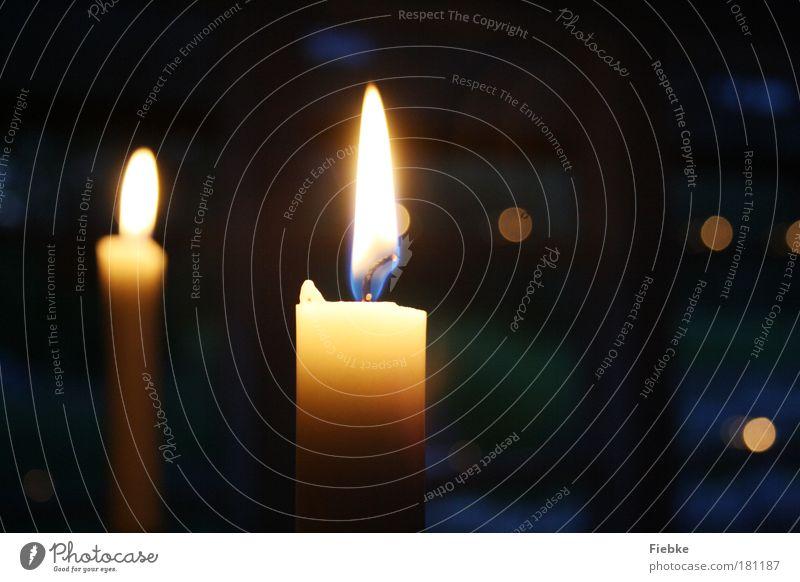 Ruhiger Herbstabend Farbfoto Innenaufnahme Textfreiraum rechts Dämmerung Nacht Licht Unschärfe elegant Häusliches Leben ausgehen Flirten Dekoration & Verzierung