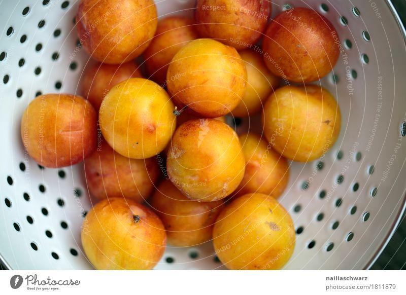 Stillleben mit Mirabellen Lebensmittel Frucht Kernobst gelbe Pflaume Bioprodukte Vegetarische Ernährung Diät Geschirr Schalen & Schüsseln Metall Duft frisch