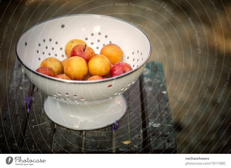 Mirabellen Lebensmittel Frucht gelbe Pflaumen Bioprodukte Vegetarische Ernährung Diät Geschirr Schalen & Schüsseln Holz Metall Holztisch Duft lecker retro